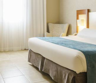 Disabled accessible room hotel ilunion fuengirola